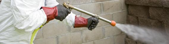 pesticides decontamination